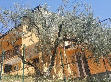 Terratetto/Terracielo in zona Santa Francesca a Veroli su Casa.it