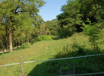Terreno agricolo in zona Fener a Alano di Piave su Casa.it