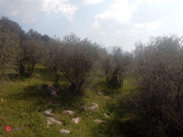 Terreno in vendita Sirignano
