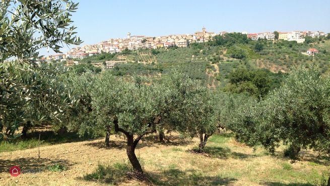 Terreno edificabile in vendita Monteodorisio