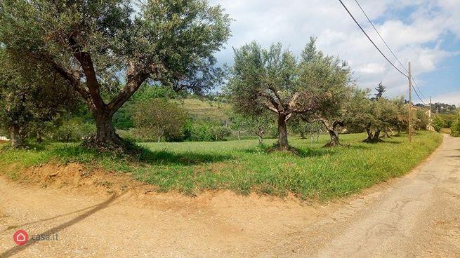 Rustico/casale in vendita C/da Lacco, Castrovillari